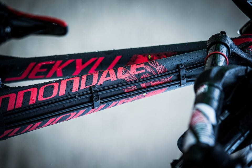 Cannondale Jekyll Metallica-detalle